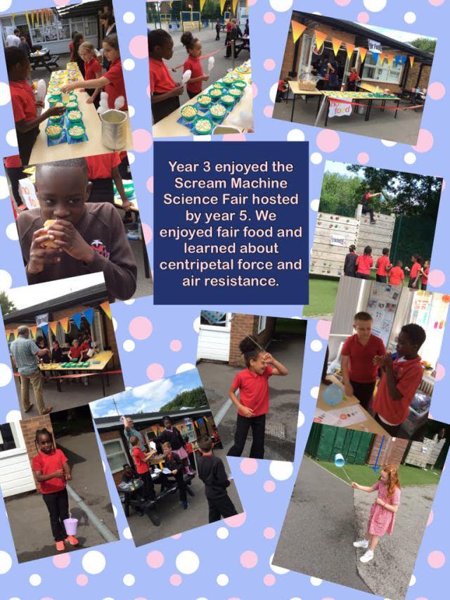 Y5 Science fair 1